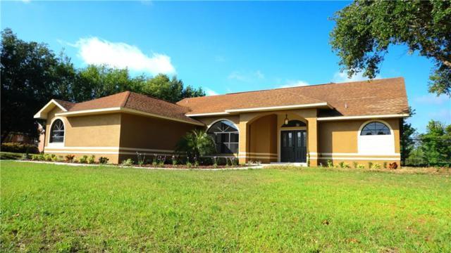 3280 Old Canoe Creek Road, Saint Cloud, FL 34772 (MLS #S5000479) :: Godwin Realty Group