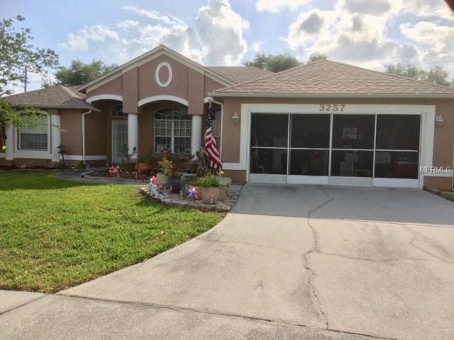 3257 Sawgrass Creek Circle, Saint Cloud, FL 34772 (MLS #S5000602) :: Godwin Realty Group