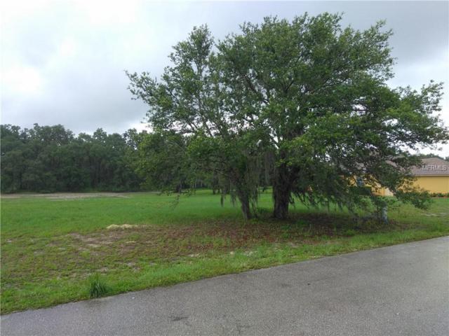 7087 Strafford Oaks Drive, Sebring, FL 33875 (MLS #S5001852) :: The Duncan Duo Team