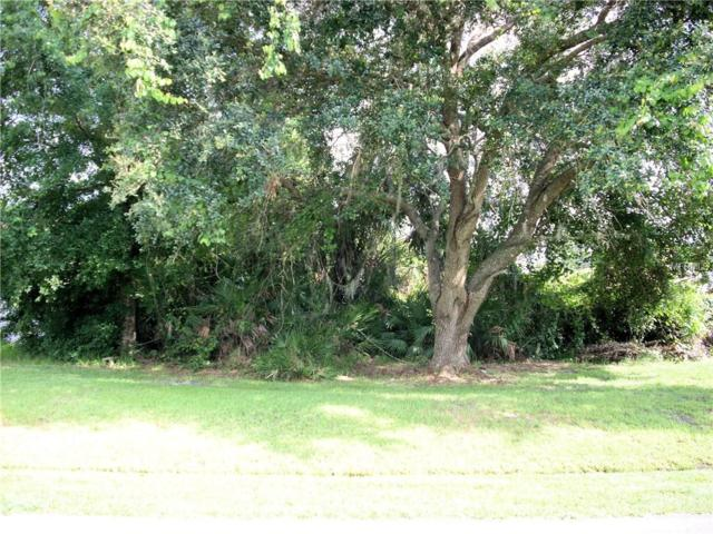 414 Flamingo Court, Poinciana, FL 34759 (MLS #S5003054) :: Premium Properties Real Estate Services