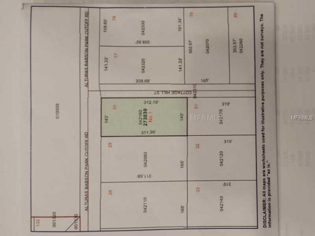 0 Cottage Hill Rd, Bartow, FL 33830 (MLS #S5003147) :: The Lockhart Team