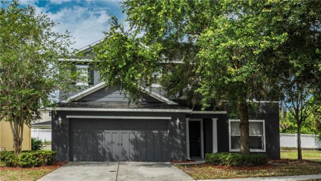 7335 Bridgeview Drive, Wesley Chapel, FL 33545 (MLS #S5003396) :: Team Bohannon Keller Williams, Tampa Properties