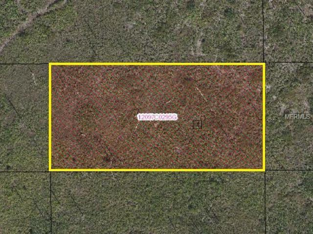 Suburban Ests Sec 13...2323 0030, Saint Cloud, FL 34773 (MLS #S5003785) :: Griffin Group
