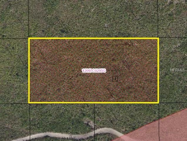 Suburban Ests Sec 13...2323 0040, Saint Cloud, FL 34773 (MLS #S5003786) :: Griffin Group