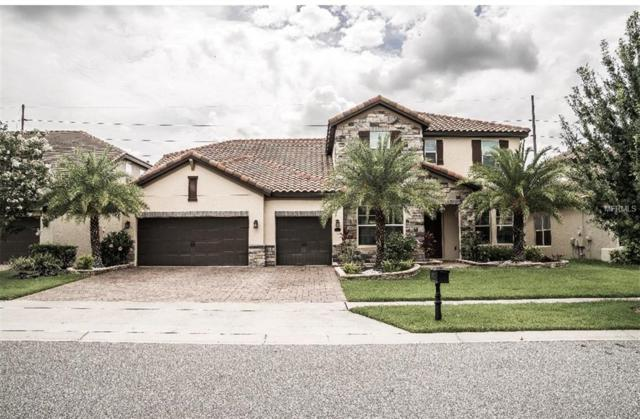 8751 Brixford Street, Orlando, FL 32836 (MLS #S5004055) :: Team Virgadamo
