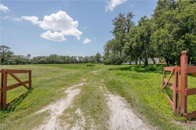 Marjorie Road, Saint Cloud, FL 34772 (MLS #S5004324) :: G World Properties