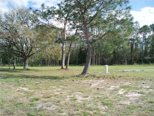 4450 Quail Roost Road, Saint Cloud, FL 34772 (MLS #S5004464) :: G World Properties
