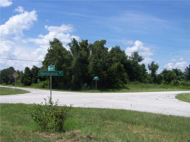 1401 Stuart Lane, Poinciana, FL 34759 (MLS #S5004523) :: Griffin Group