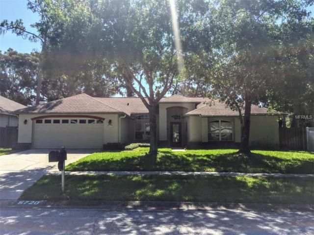 5720 Piney Lane Drive, Tampa, FL 33625 (MLS #S5004547) :: Team Virgadamo