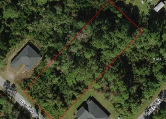Big Bend Drive, Saint Cloud, FL 34771 (MLS #S5005198) :: The Duncan Duo Team
