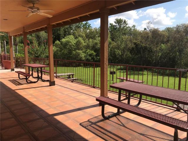 623 Dory Lane #104, Altamonte Springs, FL 32714 (MLS #S5005864) :: Team Bohannon Keller Williams, Tampa Properties