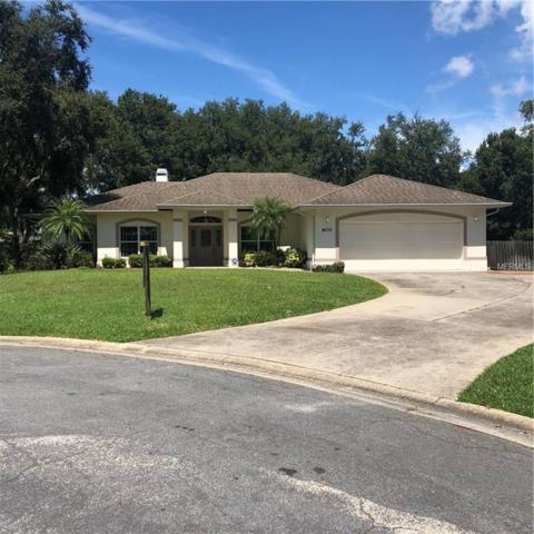 600 Brighton Place Boulevard, Kissimmee, FL 34744 (MLS #S5005929) :: Godwin Realty Group