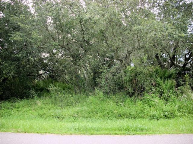 315 Shad Way, Poinciana, FL 34759 (MLS #S5006206) :: KELLER WILLIAMS CLASSIC VI