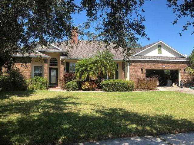 1742 Lee Janzen Drive, Kissimmee, FL 34744 (MLS #S5007373) :: Remax Alliance