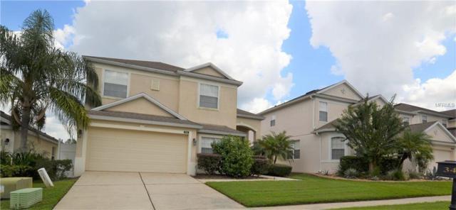 342 Higher Combe Drive, Davenport, FL 33897 (MLS #S5007421) :: Remax Alliance