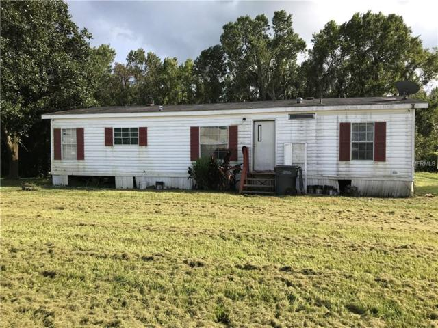 4100 Shady Hammock Drive, Mulberry, FL 33860 (MLS #S5008339) :: Welcome Home Florida Team
