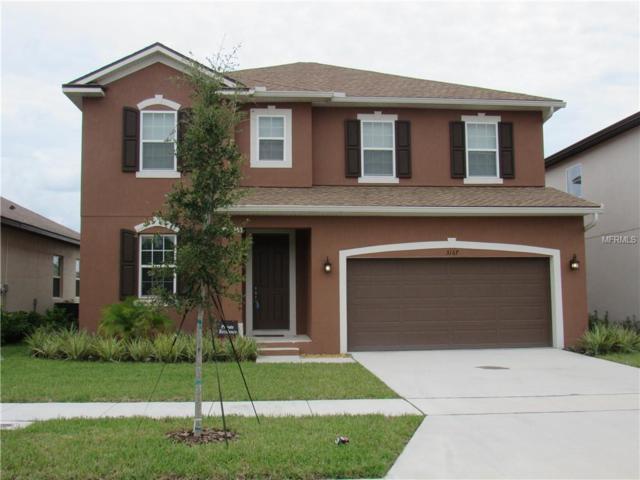 3167 Dark Sky Drive, Harmony, FL 34773 (MLS #S5008407) :: Godwin Realty Group
