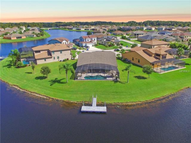 3102 Bass Boat Way, Kissimmee, FL 34746 (MLS #S5008452) :: RealTeam Realty