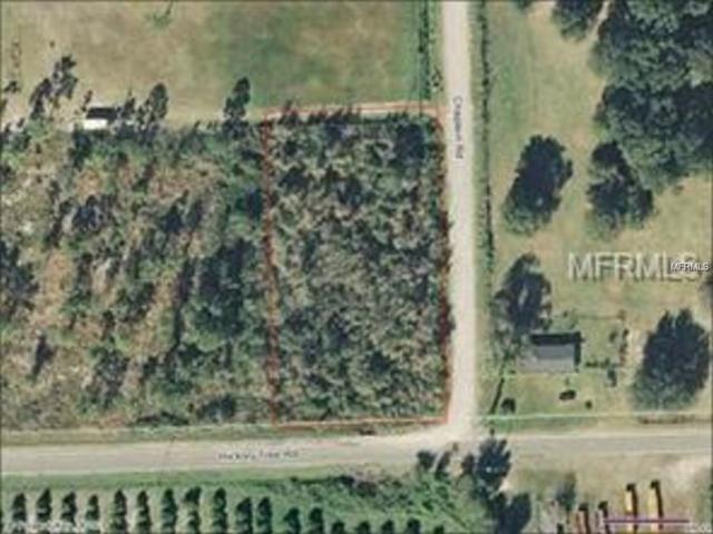 Hickory Tree Road, Saint Cloud, FL 34772 (MLS #S5008665) :: Godwin Realty Group