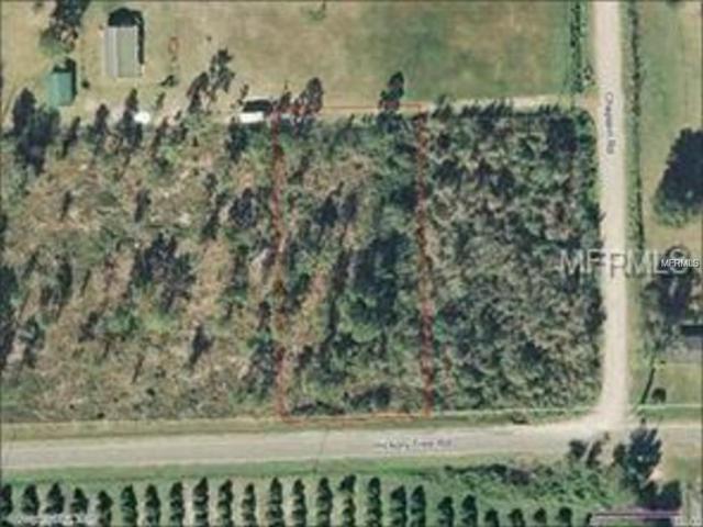 Hickory Tree Road, Saint Cloud, FL 34772 (MLS #S5008666) :: Godwin Realty Group