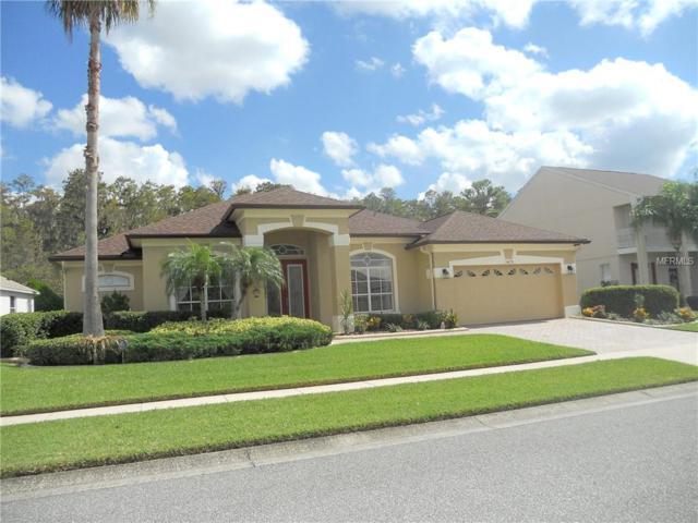 14670 Braddock Oak Drive, Orlando, FL 32837 (MLS #S5008823) :: CENTURY 21 OneBlue