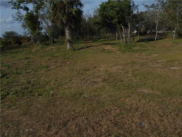 Snell Creek Rd, Davenport, FL 33837 (MLS #S5009777) :: Gate Arty & the Group - Keller Williams Realty