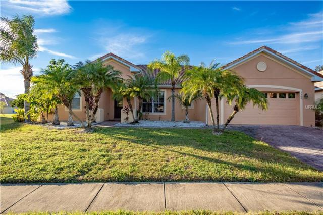 3502 Forest Park Drive, Kissimmee, FL 34746 (MLS #S5010335) :: Ideal Florida Real Estate