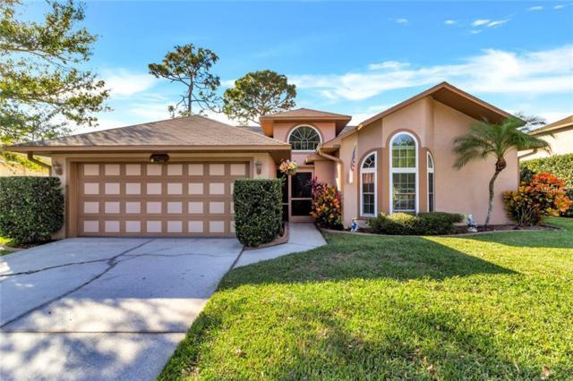 1508 Cypress Woods Circle, Saint Cloud, FL 34772 (MLS #S5010597) :: Homepride Realty Services