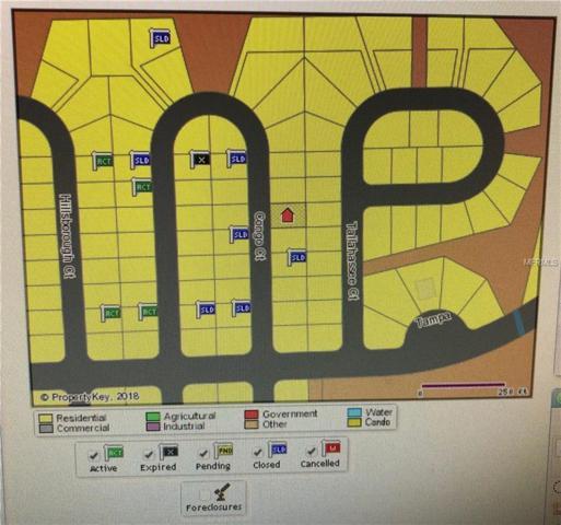 1311 Congo Drive, Poinciana, FL 34759 (MLS #S5010624) :: Homepride Realty Services