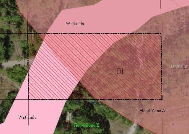 Suburban Ests Sec 14...4441 0010, Saint Cloud, FL 34771 (MLS #S5010690) :: Homepride Realty Services