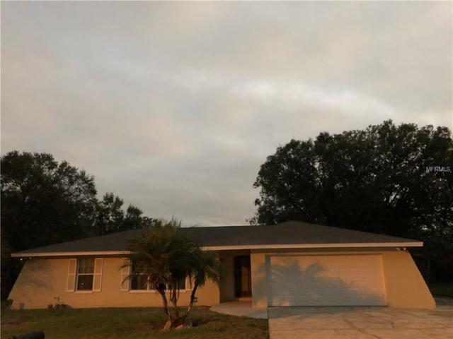 1324 Alameda Drive N, Lakeland, FL 33805 (MLS #S5010782) :: Gate Arty & the Group - Keller Williams Realty