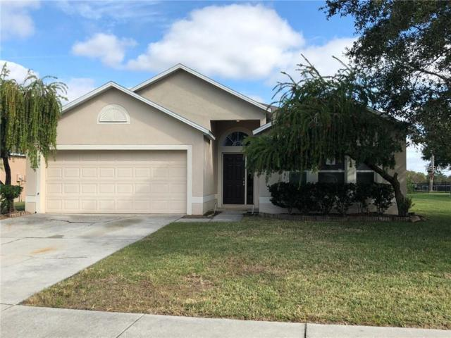 31741 Loch Aline Drive, Wesley Chapel, FL 33545 (MLS #S5010918) :: Team Bohannon Keller Williams, Tampa Properties