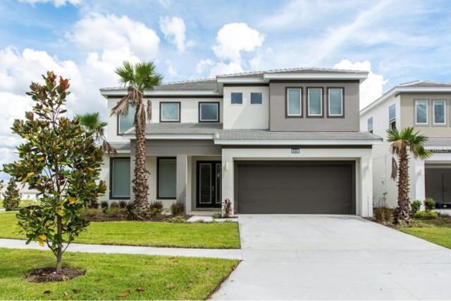 4564 Cabello Loop, Kissimmee, FL 34746 (MLS #S5011563) :: Team Bohannon Keller Williams, Tampa Properties