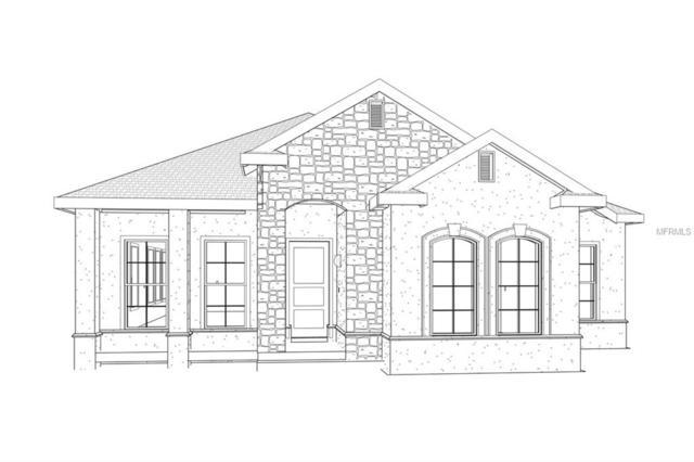 3335 Schoolhouse Road, Harmony, FL 34773 (MLS #S5011971) :: Godwin Realty Group