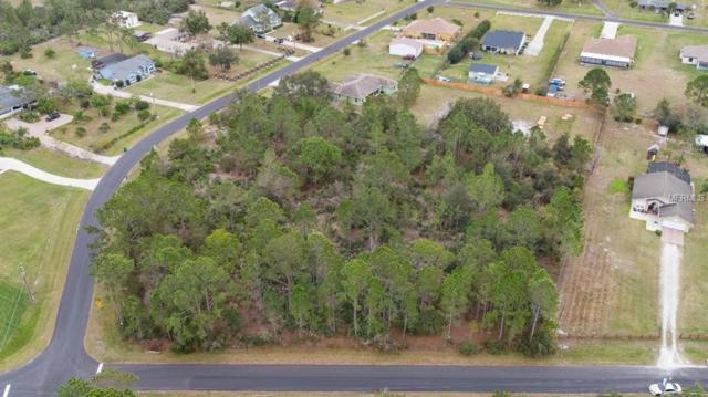 Bridle Path, Saint Cloud, FL 34771 (MLS #S5012247) :: Griffin Group