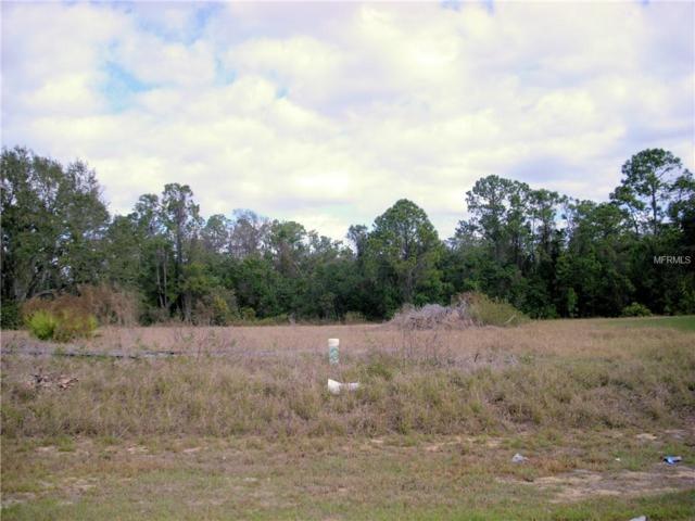 1131 Nelson Meadow Lane, Poinciana, FL 34759 (MLS #S5012665) :: The Duncan Duo Team