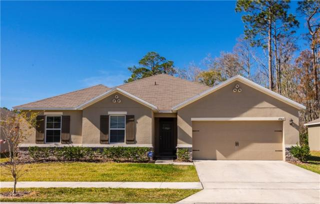 4942 Harold Stanley Drive, Kissimmee, FL 34758 (MLS #S5012713) :: Dalton Wade Real Estate Group