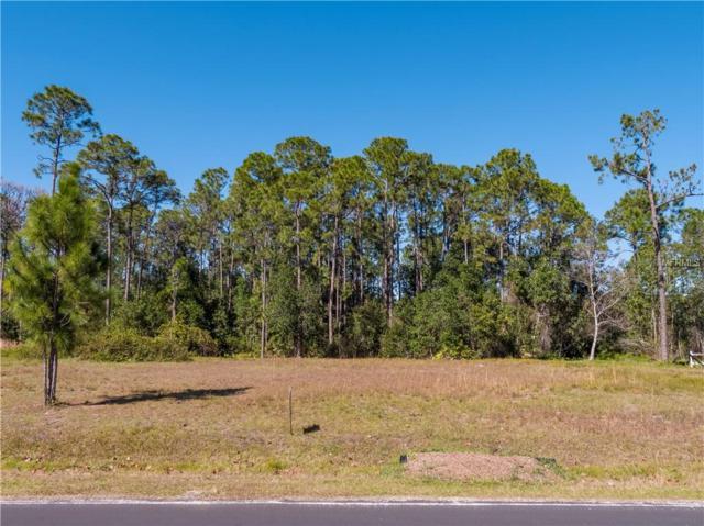 6967 Big Bend Drive, Saint Cloud, FL 34771 (MLS #S5012884) :: Griffin Group