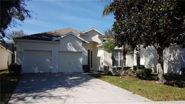2650 Daulby Street, Kissimmee, FL 34747 (MLS #S5013251) :: The Light Team
