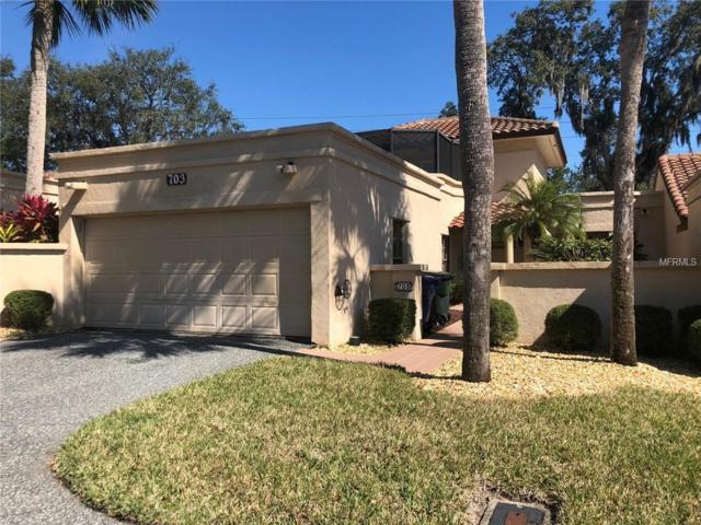 703 Santa Cruz Lane #13, Howey in the Hills, FL 34737 (MLS #S5013411) :: Cartwright Realty