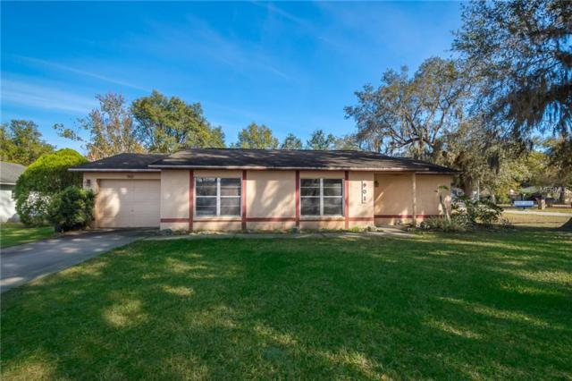 901 Whisler Court, Saint Cloud, FL 34769 (MLS #S5013705) :: Homepride Realty Services
