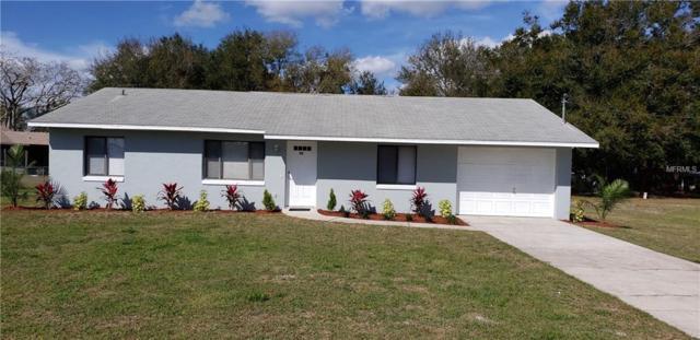 450 E 10TH Street, Saint Cloud, FL 34769 (MLS #S5013718) :: Homepride Realty Services