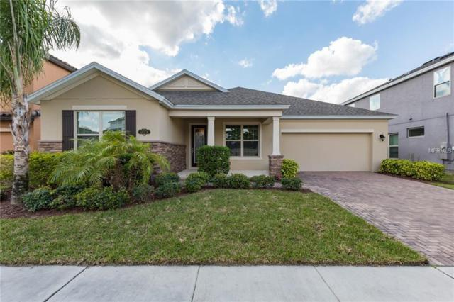 9078 Overlook Pass Drive, Windermere, FL 34786 (MLS #S5013977) :: The Figueroa Team