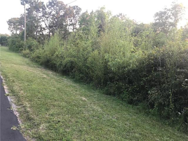 Running Horse Trail, Saint Cloud, FL 34771 (MLS #S5016379) :: The Duncan Duo Team