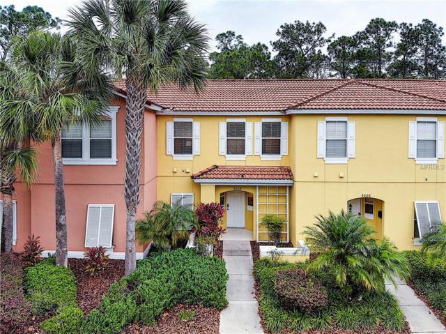 3008 Yellow Lantana Lane, Kissimmee, FL 34747 (MLS #S5016507) :: Cartwright Realty