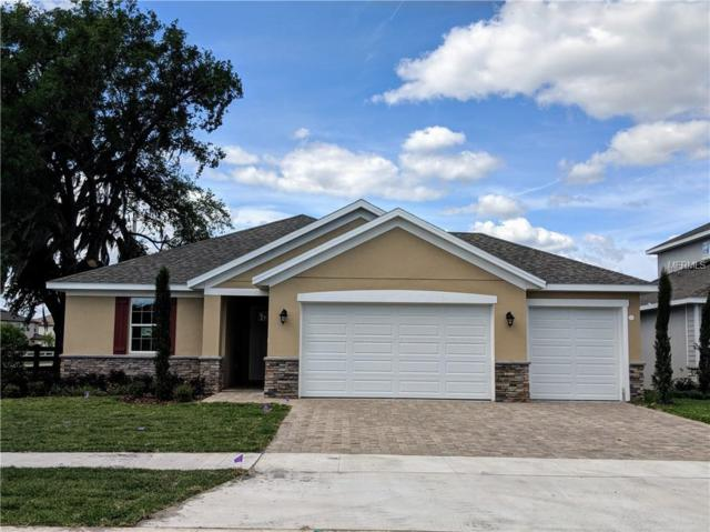 5201 Tracie Way, Saint Cloud, FL 34771 (MLS #S5016610) :: The Duncan Duo Team