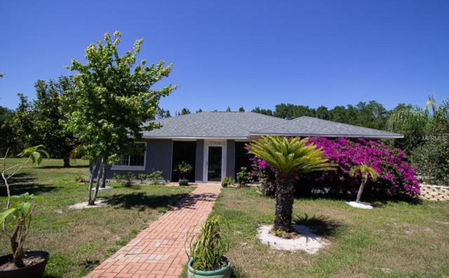 23838 Reading Road, Howey in the Hills, FL 34737 (MLS #S5017124) :: Team Bohannon Keller Williams, Tampa Properties