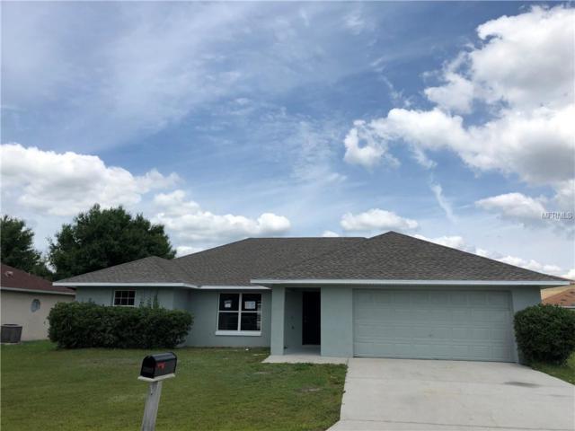1007 Morvan Lane, Kissimmee, FL 34759 (MLS #S5017530) :: Bustamante Real Estate