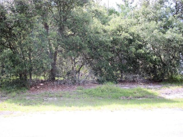 331 Gardenia Court, Poinciana, FL 34759 (MLS #S5017783) :: Team Bohannon Keller Williams, Tampa Properties