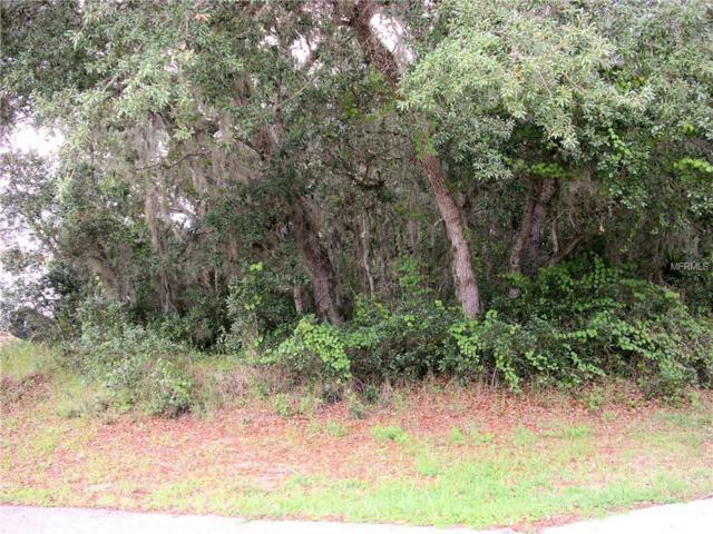 205 Flounder Place, Poinciana, FL 34759 (MLS #S5017784) :: Team Bohannon Keller Williams, Tampa Properties